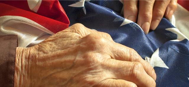 sub-veterans